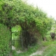 L'environnement de la maison paysanne : végétaux, jardins et clôtures